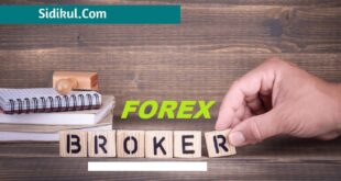 broker forex terpercaya indonesia